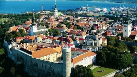 Skype's not the limit for Estonia